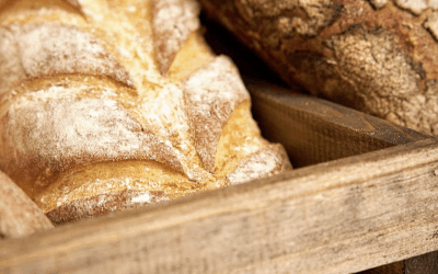 Pan de masa madre y sus beneficios